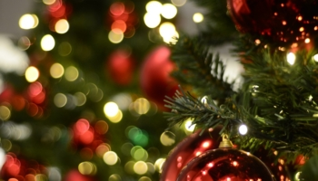 BEST Solar Christmas Lights Reviews & Ratings 2021